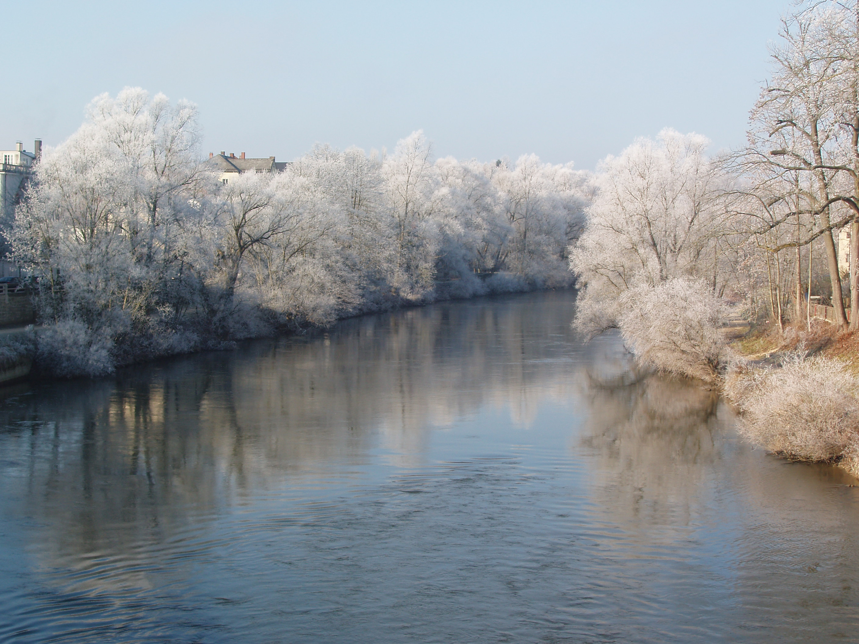 frost along the Danube